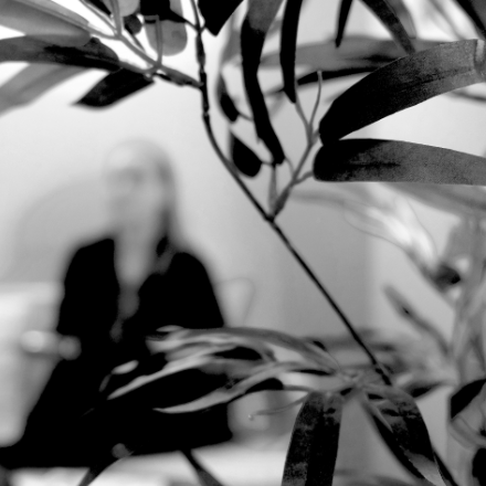 Ein Detail einer Pflanze im Wartezimmer. Im Hintergrund sitzt eine Patientin.